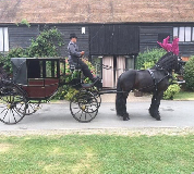 Horse and Carriage Hire in Guildford